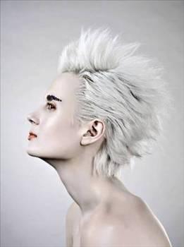 Saçlarımız niçin beyazlar? 1