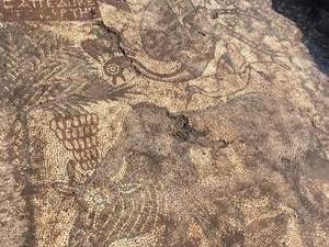 Kaçak kazı, Roma Dönemi'ne ait taban mozaiklerini ortaya çıkardı