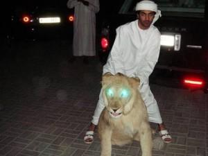 Zengin Arapların yeni modası