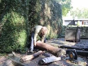 Ağaç kütüğünden bakın ne yaptı !