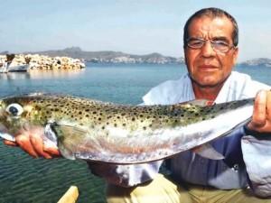 İzmir Körfezi'nden balon balığı çıktı