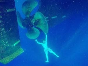 Su altında çekilmiş inanılmaz kareler