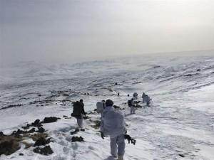 PKKnın yuvalandığı Tendürek'e Mehmetçik havadan indi