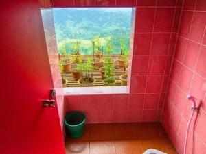 Şimdiye kadar yapılmış en sıradışı tuvaletler