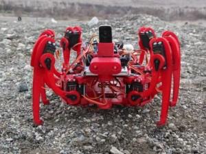 """Bubi tuzaklarına """"Örümcek Robot""""lu çözüm"""