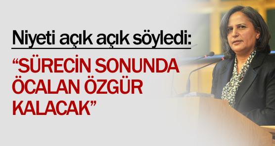 Sürecin sonunda Öcalan serbest kalacakmış !