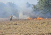 Kırklarelinde Orman Yangını (2)