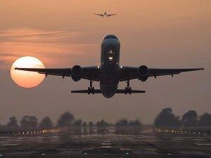 THY uçağı kuş sürüsüne girdi