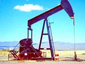 Türkiye'deki petrol için heyecanlandıran açıklama !