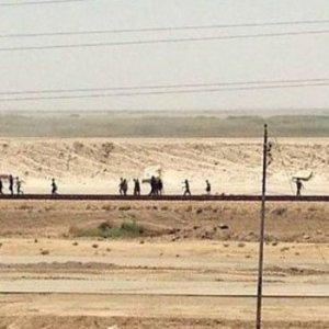Irak ordusundan Ramadi operasyonu