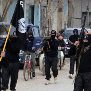 IŞİD'lilere AFAD kartı mı verildi ?