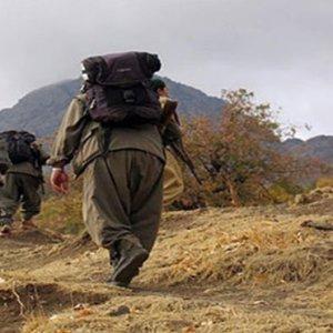 PKK'nın en değerli iki üyesi öldürüldü !