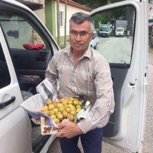 Türkiye'de Açık Alanda İlk Kayısı Hasadı Yapıldı