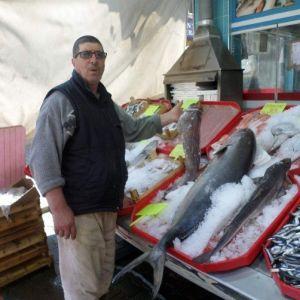 Mudanyalı Balıkçı Birbirinden İlginç Balıkları Sergiliyor