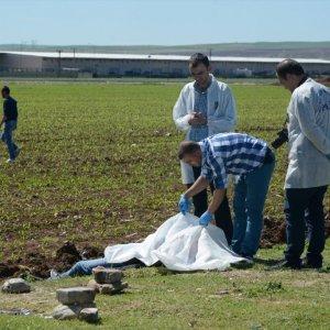 Mısır tarlasında erkek cesedi bulundu