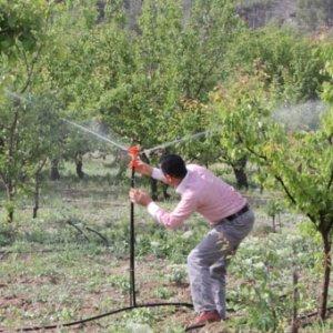 Çiftçilere müjde ! Dona karşı yeni çözüm