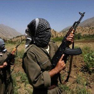 Diyarbakır'da PKK'nın kilit ismi yakalandı !