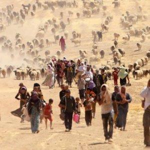 500 milyon insan evinden olabilir !