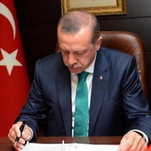 Cumhurbaşkanı Erdoğan 4 kanunu onayladı !