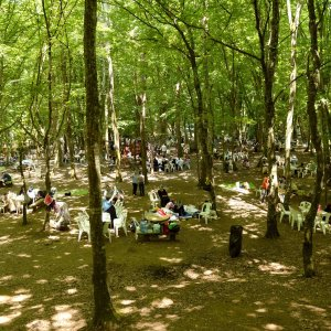 Bağcılar için piknik vakti