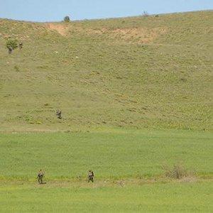 Tunceli'de çatışma: 3 militanı öldürüldü
