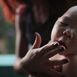 Avrupa için korkutan Zika uyarısı