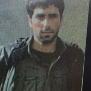 'Bahoz' kod adlı terörist yakalandı !