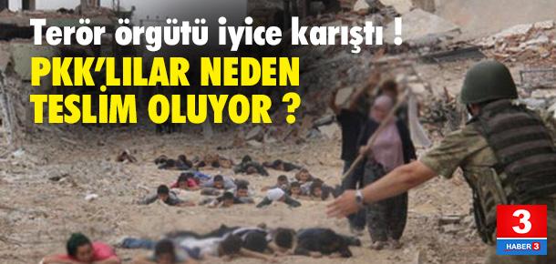 PKK'lılar neden teslim olmaya başladı ?