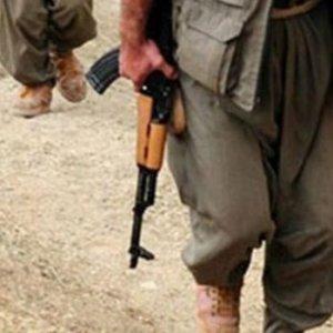 'PKK'nın Amanos cellatları'na ceza yağdı