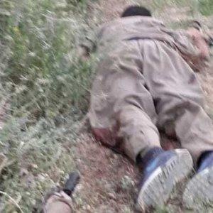 PKK'nın Karakoçan sorumlusu öldürüldü