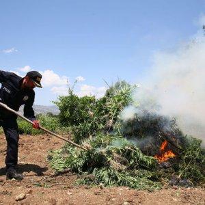 PKK'nın yıllık uyuşturucu geliri