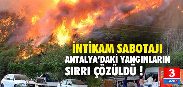Orman yangınlarının arkasında PKK mı var ?