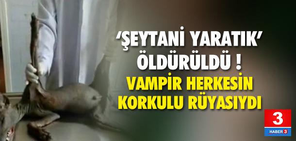 Kan içerek yaşayan 'vampir' öldürüldü