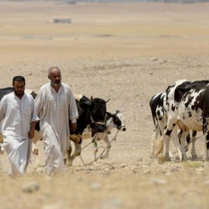 Musul'da IŞİD'e dev darbe !