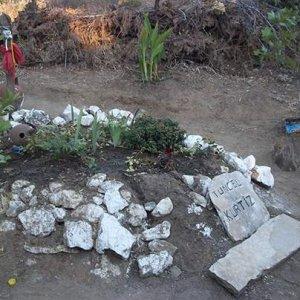 Tuncel Kurtiz'in mezarı sahipsiz kaldı