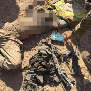 Öldürülen YPG'liler Türkiye doğumlu