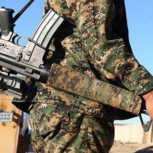 ABD'den Kürt gruplar açıklaması