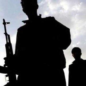 PKK'nın bombacısı Van'da öldürüldü