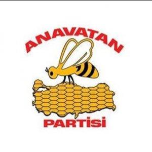 AYM'den Anavatan Partisi kararı