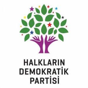 """HDP'li 8 milletvekili hakkındaki """"zorla getirilme"""" kararı"""