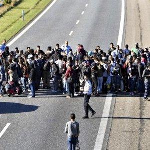 Danimarka sığınmacı alımını durdurdu