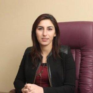 Van'da Belediye Başkanı gözaltına alındı