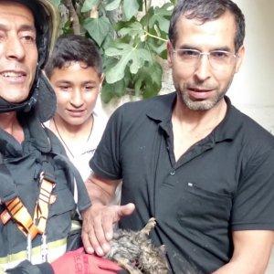 35 metrelik kuyudan yavru kediyi kurtardılar