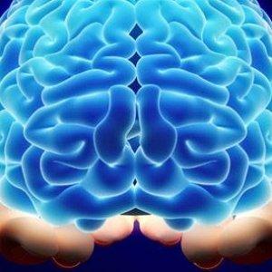 """Bilim dünyası """"beyinsiz"""" insanın şaşkınlığını yaşıyor"""