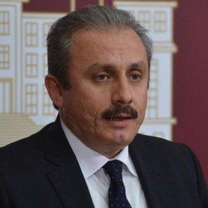 """Mustafa Şentop'tan """"başkanlık"""" açıklaması"""