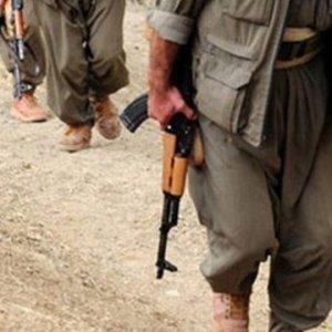 Siirt'te operasyon: 2'si kadın 3 terörist öldürüldü