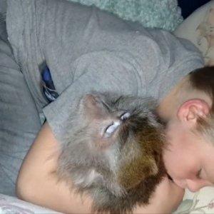 Çocuk ile maymunun uyku keyfi