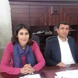 Çaldıran Belediye Eş Başkanı gözaltına alındı