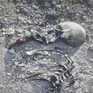 Barajda insan iskeleti bulundu