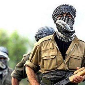 Şırnak'ta 2 terörist öldürüldü